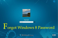 Windows 8 Reset